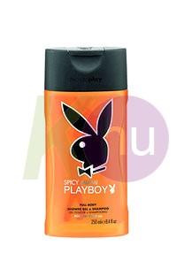 Playboy tus 250ml Miami 11077551