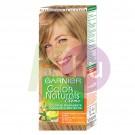 Garnier Color Naturals 8 19146102
